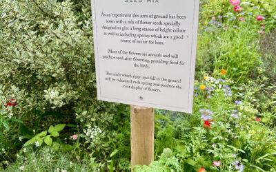 Sandringham's Queen Bee Flower Power
